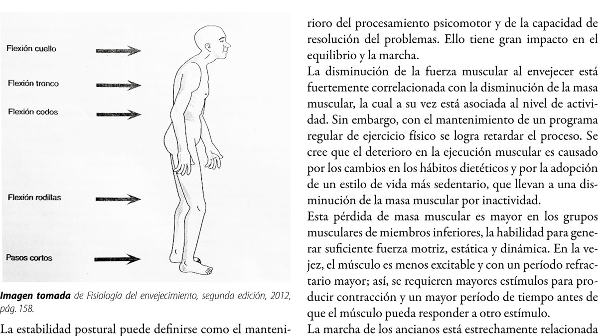 Enfermedad de Parkinson como paradigma de la  inestabilidad. La importancia de la terapia física como parte del tratamiento