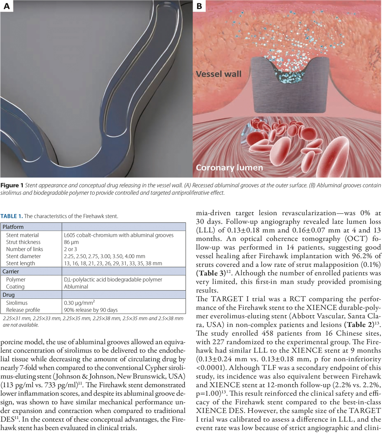 The Firehawk stent: a review of a novel abluminal groove-filled biodegradable polymer sirolimus-eluting stent